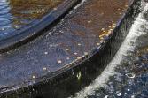 fountain-55210_960_720